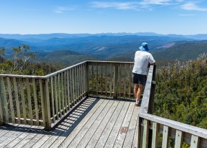 Warratah Lookout Hartz Mountains, Tasmania